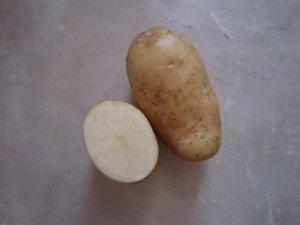 Картофель урожай 2012