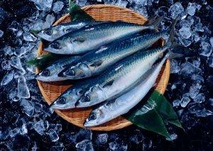 Рыба и морепродукты оптом из Киева