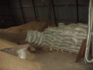 предлагаем жмых, отруби, зерносмесь, зерно, масло, подсолнечник