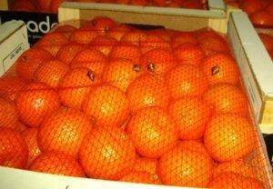Продаем оптовыми партиями марокканские мандарины