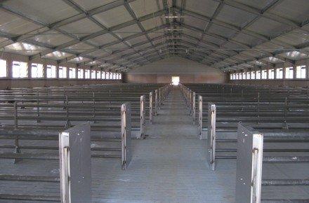 Строительство свинарников (свинофермы, свинокомплексы), коровников, птичников под ключ в Украине.