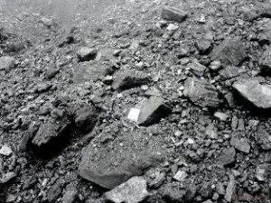 Уголь каменный марки Д и бурый уголь марки 2Б, 3Б