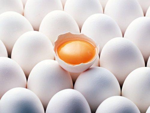 Купим оптом яйца куриные