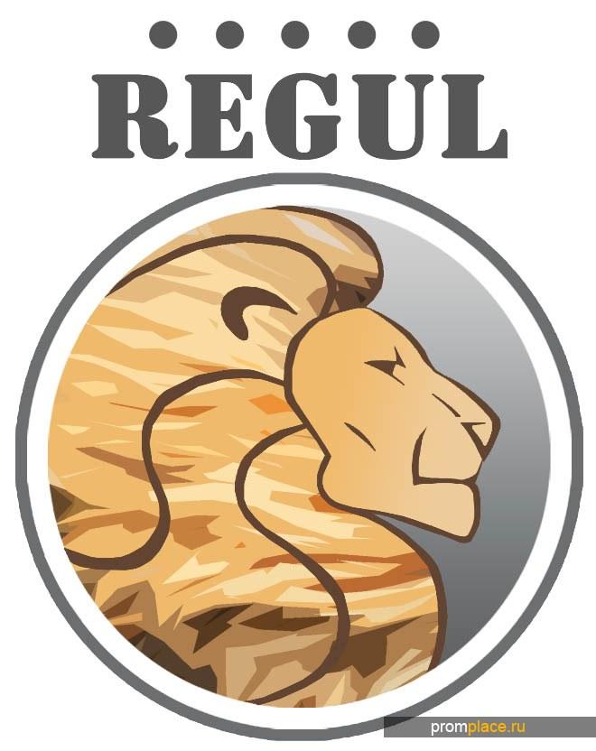 ООО Регул производит вставки монтажные фланцевые.