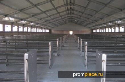 Строительство свинокомплексов в Украине.