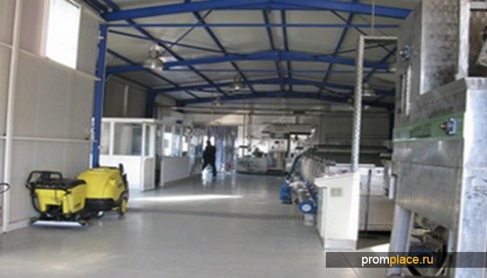 завод по производству оливкового масла и консервированных оливок