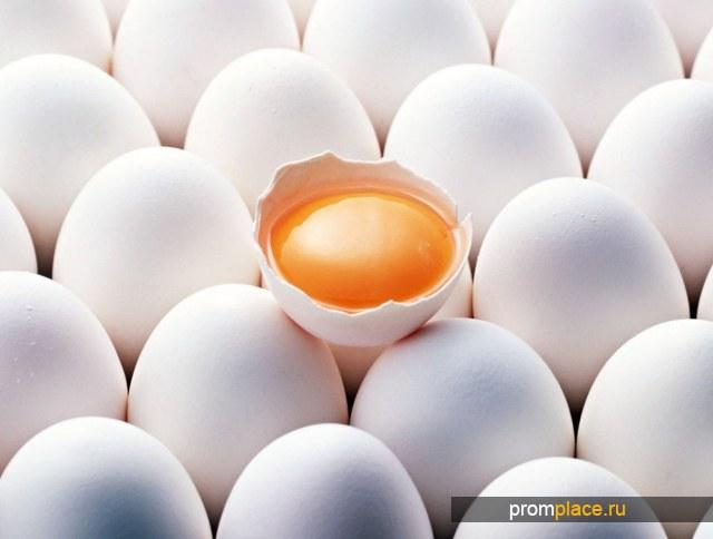 Яйцо, куриное, столовое, реализуем