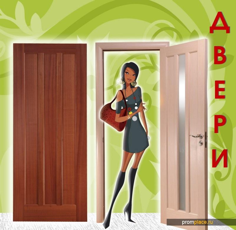 Мы специализируемся по дверям - входным и межкомнатным.
