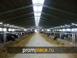 Строительство свинофермы под ключ, Украина.