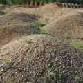 ОПГС (обогащенная песчано-гравийная смесь)