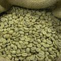 зеленый кофе в зернах сорт Арабика Боливия Extra,washed