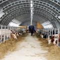 Мини ферма - оснащение и технологические процессы