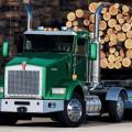 Перевозка леса - выбираем подходящий вариант